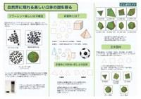 polyhedron-1.jpg